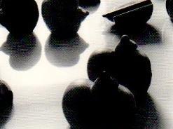 Louis Fortier CLONES © Louis Fortier, Galerie B-312, exposition Clones, 1999.