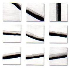 Pierre Clemens LANDSCAPE IN PROCESS © Pierre Clemens, Galerie B-312, exposition Lanscape in process, 2000.
