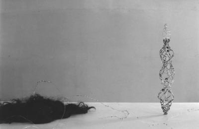 David Altmejd MODÈLES D'ESPRIT ET JARDINS INTÉRIEURS © David Altmejd, Galerie B-312, modèles d'esprit et jardins intérieurs, 1999.