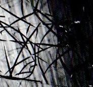 Maria Shériff SCULPTURES ET DESSINS RÉCENTS © Maria Sheriff, Galerie B-312, exposition Sculptures et dessins récents, 1999.