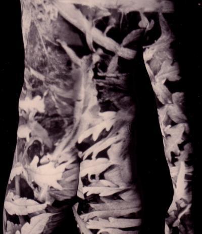 Martin Borden SOUS LE JARDIN © Martin Borden, exposition à la Galerie B-312, 1994.